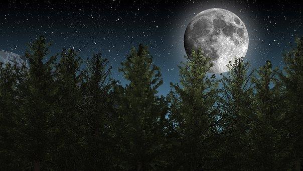 Lune, Ciel De Nuit, Étoiles, Arbres