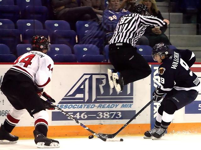 Hockey Referee Ice &#1...