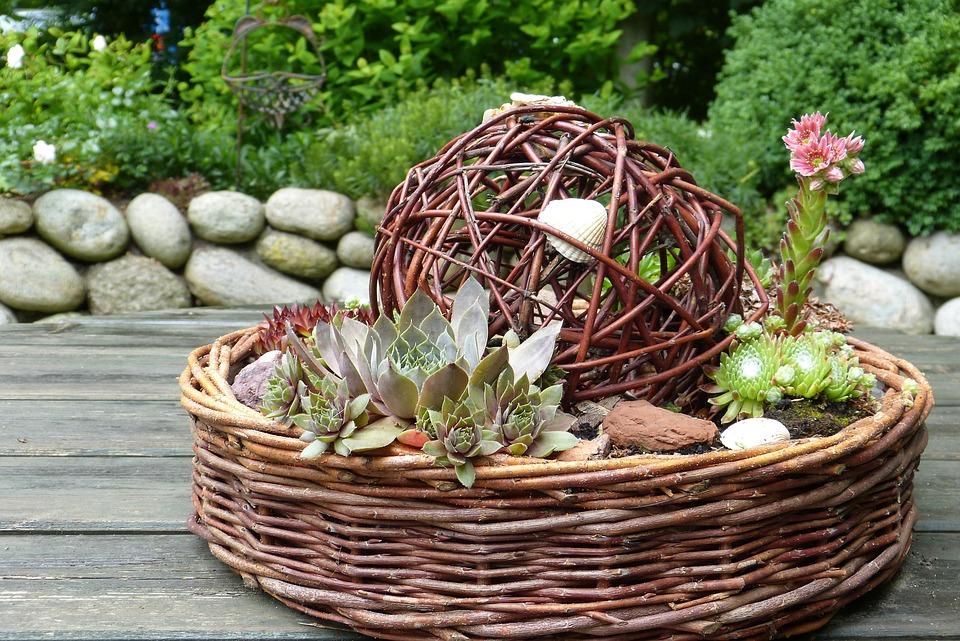 Kostenloses Foto: Garten, Deko, Muschel, Holz, Weide - Kostenloses ...