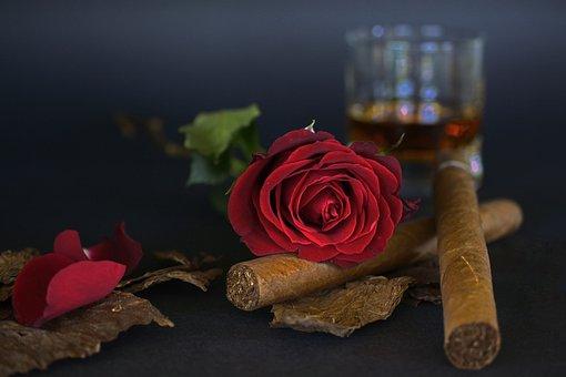 Rose, Red Rose, Cigar, Tobacco Leaves