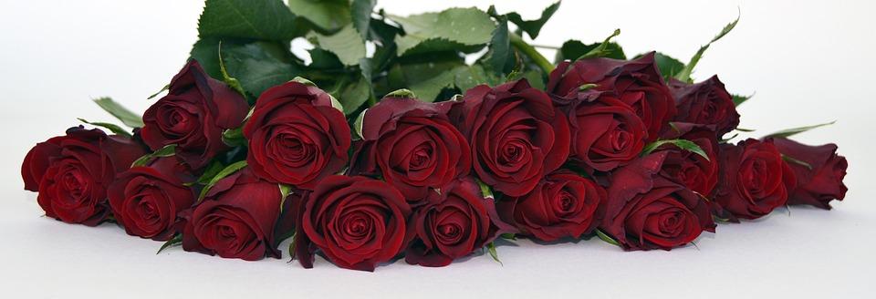 Rosen Rosenstrauss Rosenstrauß Kostenloses Foto Auf Pixabay