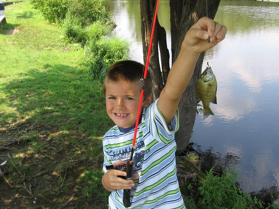釣り, 魚, 少年, 釣り竿, 池, キャッチ, スポーツ, ロッド, 淡水, 夏, レクリエーション, 保持