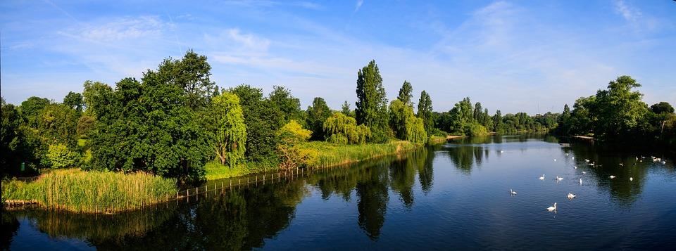 Serpentine Hyde Park, Blue Sky, Water, Swans