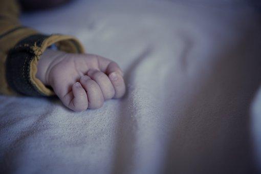 培养幼儿健康的心理素质有三大要素