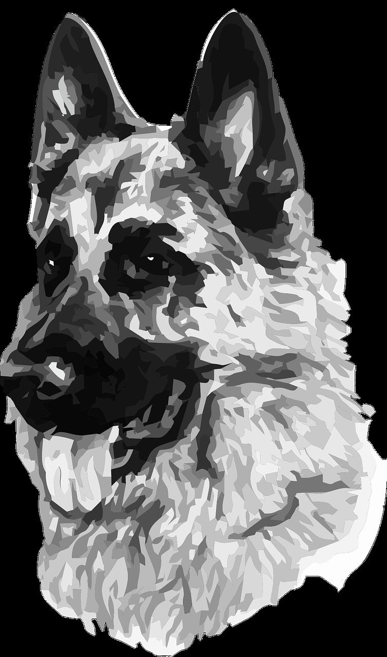 Картинка нарисованной немецкой овчарки