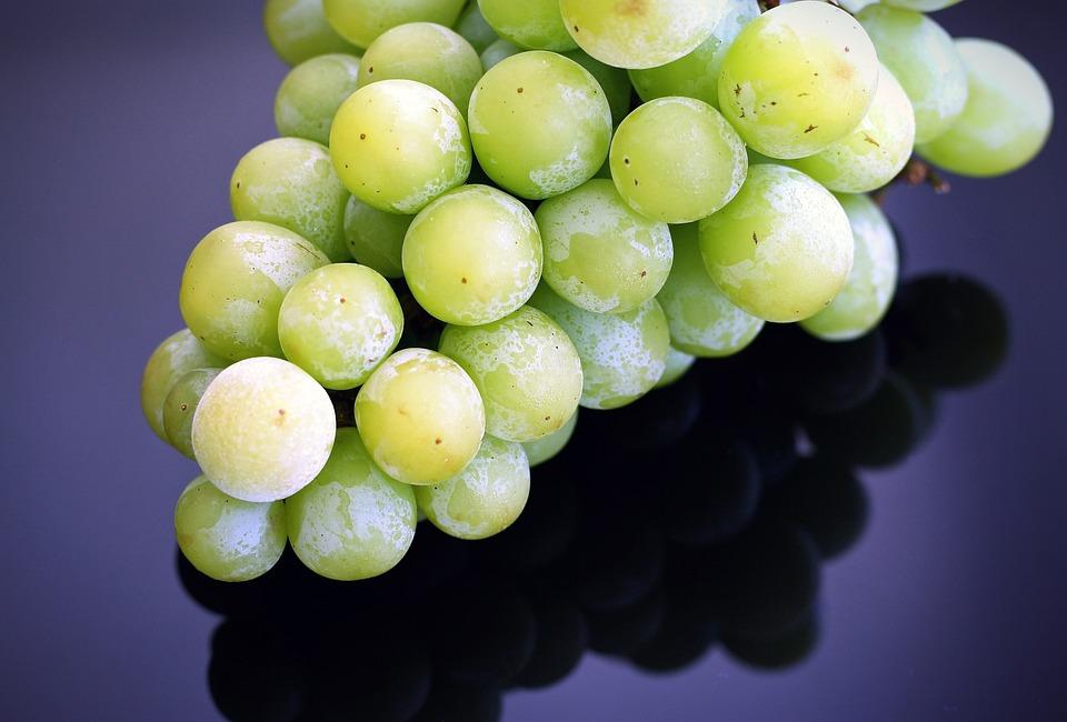 Trauben, Gefrorenes Obst, Sommer, Bio, Frisch, Gesund