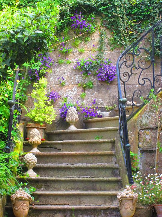 Free photo Staircase Old Flowers Free Image on Pixabay 1477657