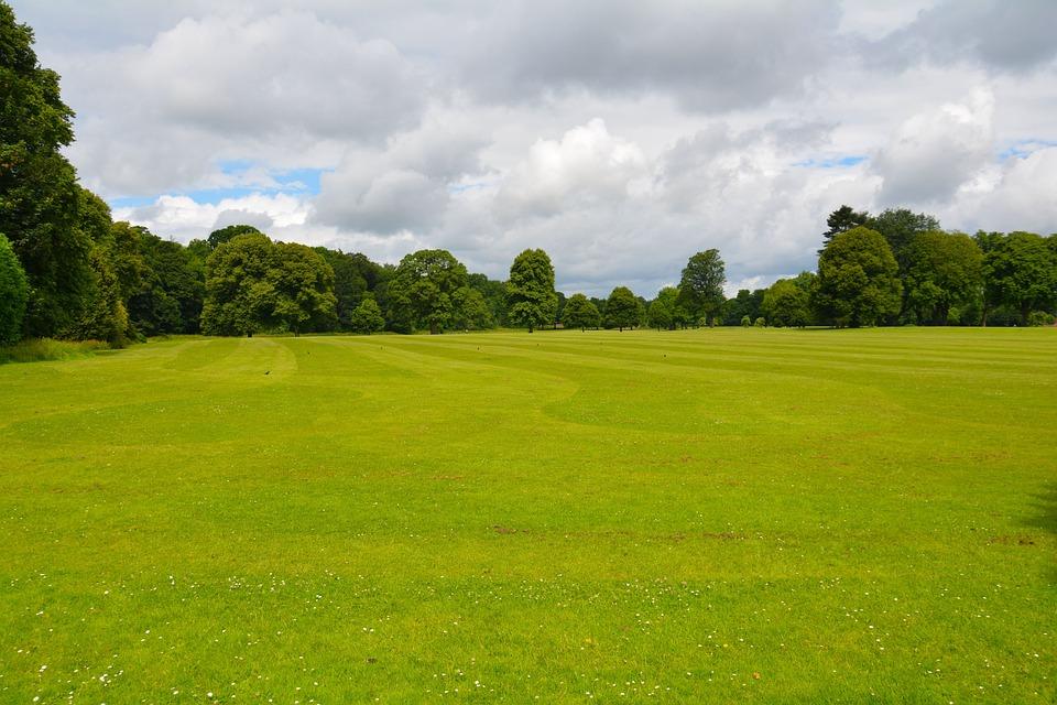 Campo rboles hierba foto gratis en pixabay - Como vallar un campo ...