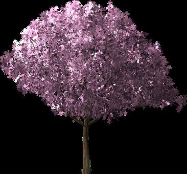 靖国神社 桜祭り