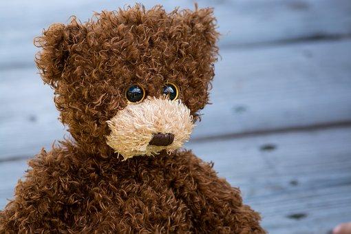 Teddy bear images pixabay download free pictures teddy teddy bear brown childhood children altavistaventures Choice Image