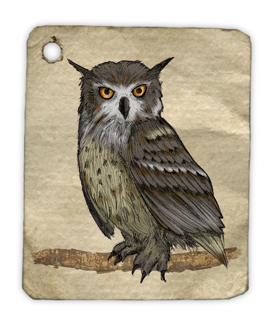 Free Illustration Owl Painting Watercolor Animal