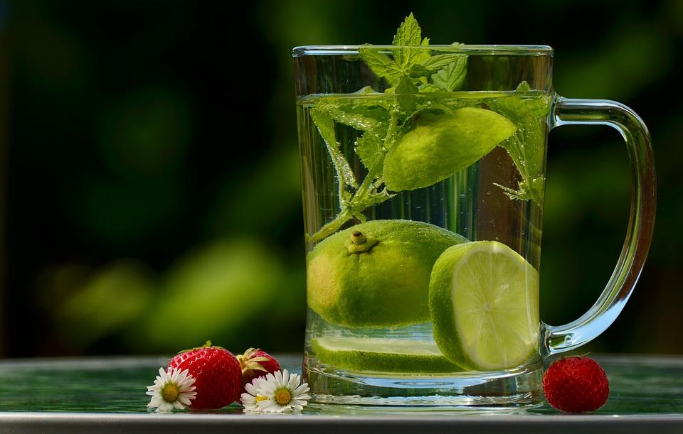 différence entre mélisse et citronnelle
