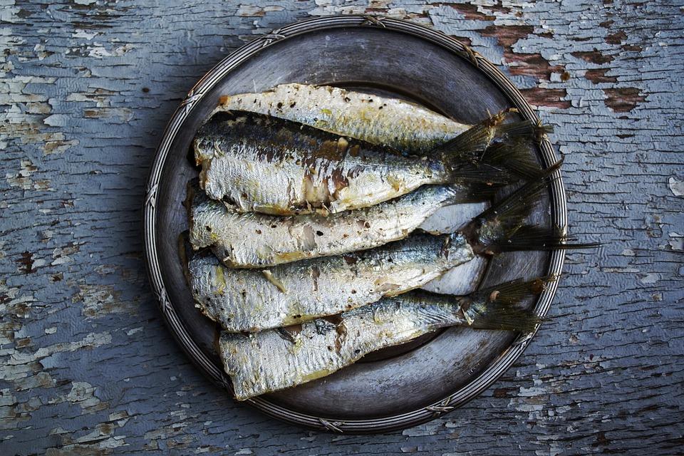 Sardinas, Peces, Alimentos Plateado, Los Alimentos