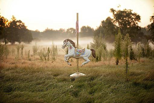 Horse, Carousel, Carousel Horse, Fair