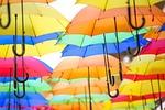 colour, rain