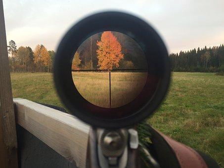 狩猟, 秋, 眼鏡照準具, フォーカス, 撮影, 武器