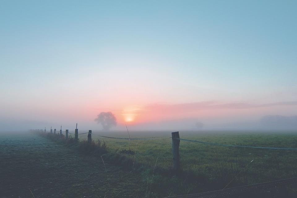 fog dawn landscape free photo on pixabay