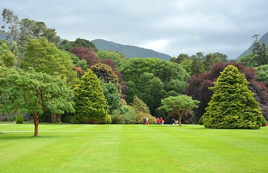 Park, Parklandschaft, English Garden