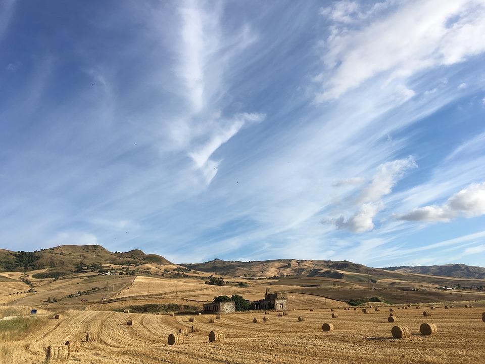 Sicilia, Grano, Paesaggio, Cielo, Agricoltura, Campagna