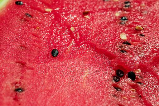 Melon, Watermelon, Pulp, Red, Section