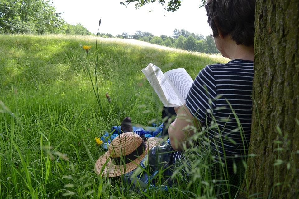 Boken Läser, Bok, Läsning, Läs, Litteratur, Sommar