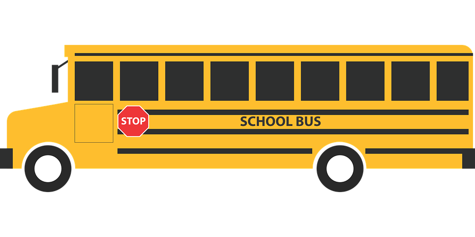 Schoolbus, School, Education, Vehicle, Transportation