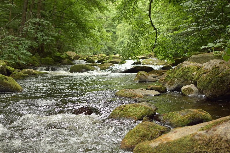 Free Photo Bode River Water Stones Idyllic Free