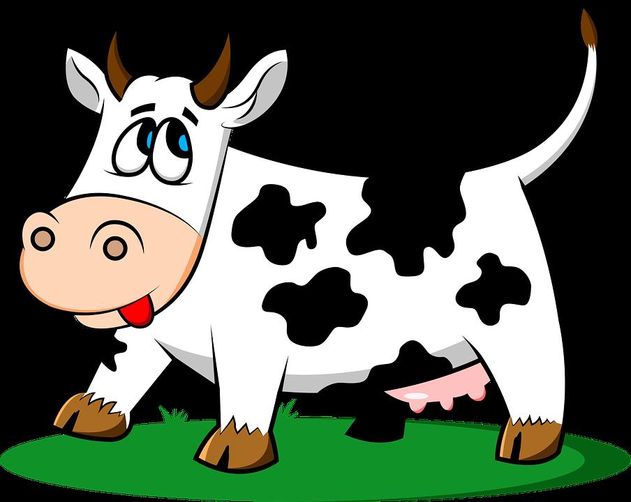 Mucca, Animale, Bestiame, Azienda Agricola