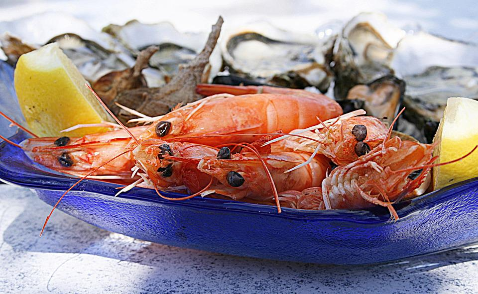 Free photo: Shrimp, Oyster, Seafood, Oysters - Free Image on Pixabay - 1502724