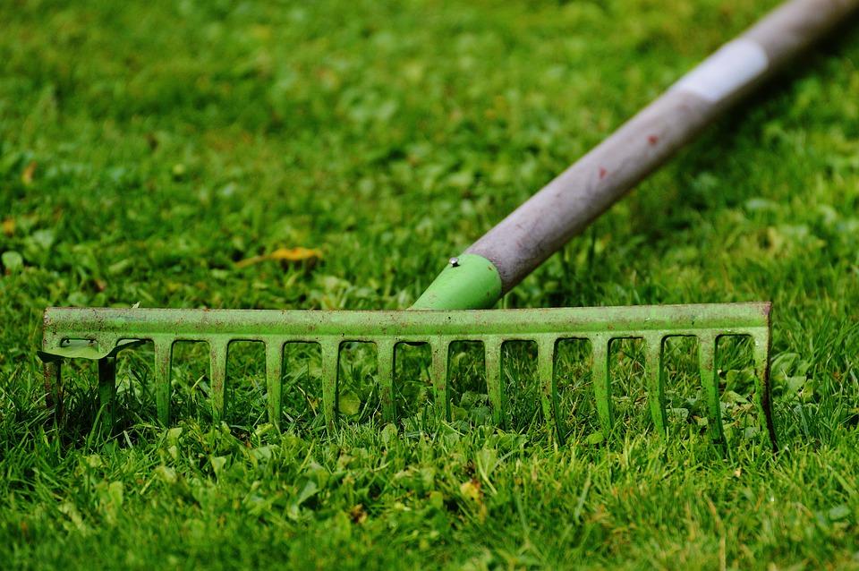 Computing Garden Work Free photo on Pixabay