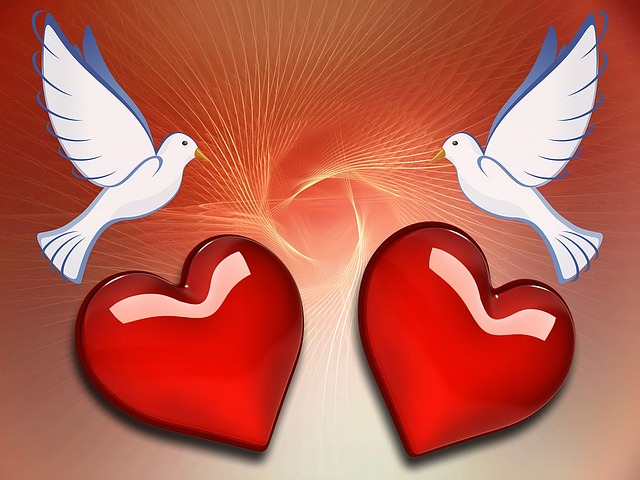 Free Illustration: Dove, Heart, Love, Background