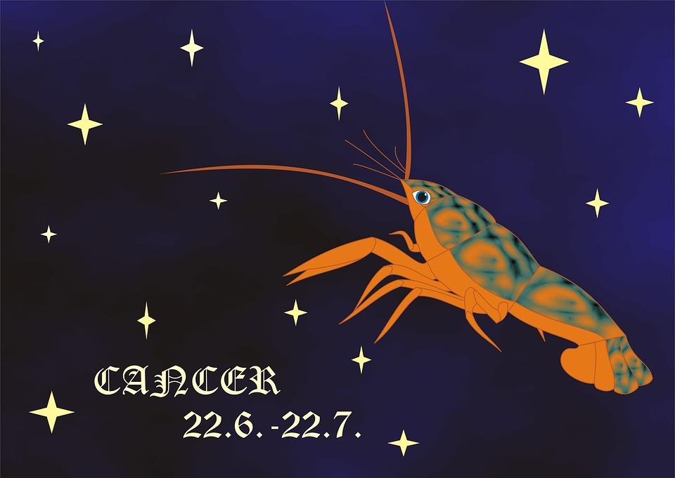 New Horoscope Chart: Zodiac Sign - Free images on Pixabay,Chart