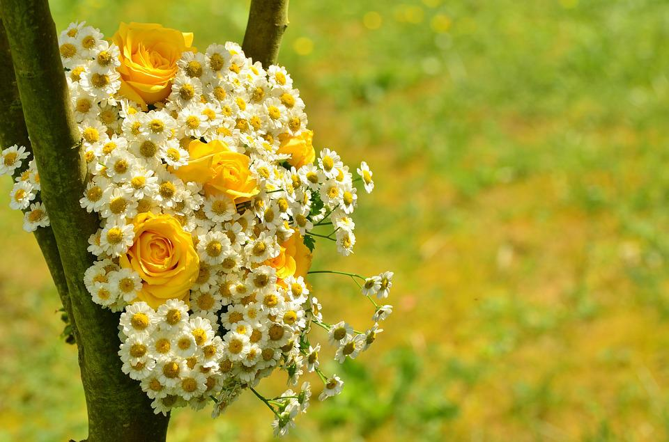 Free Photo Bouquet Roses Yellow Roses Free Image On