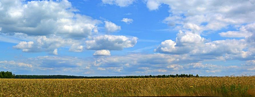 Sky, Clouds, Panorama, Cereals