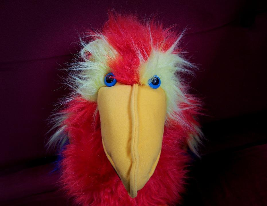 free photo  stare  parrot  puppet  toy  bird