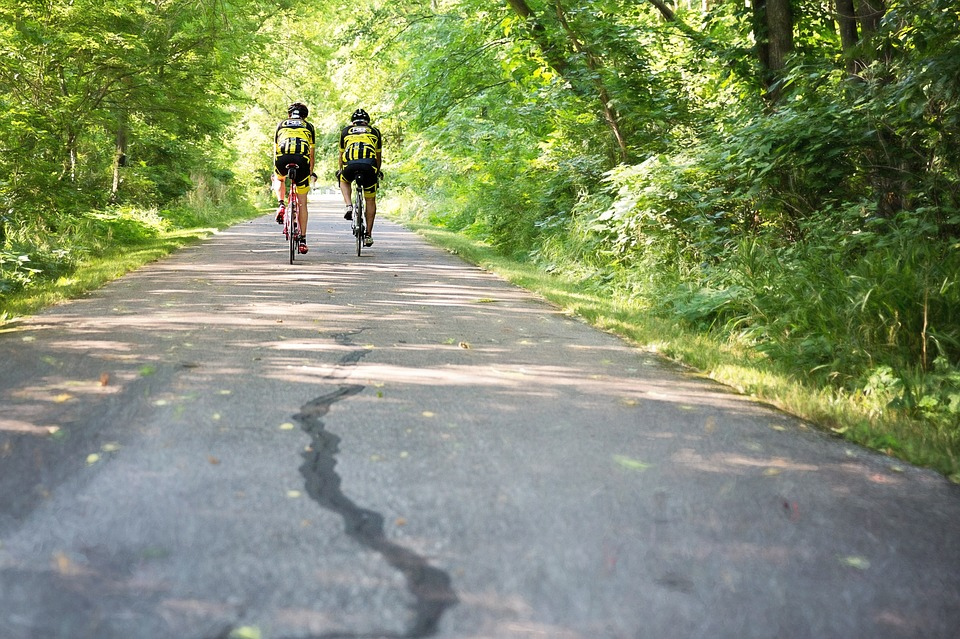 two cyclists riding on a winding road, trees in background