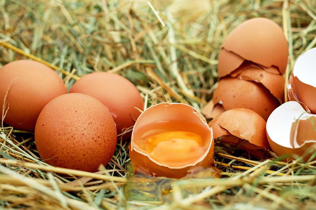 https://cdn.pixabay.com/photo/2016/07/11/19/40/eggs-1510449_1280.jpg