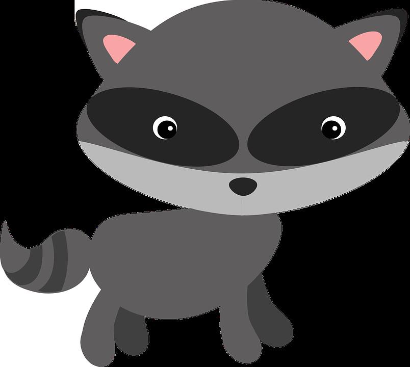 Free vector graphic raccoon woodland animal masked free image on