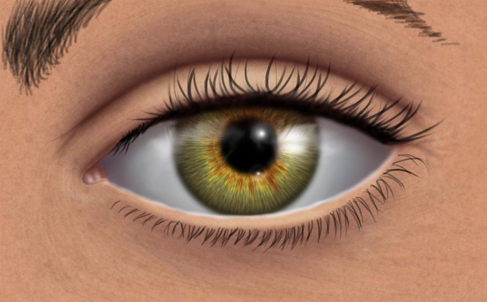 Peinture Dans L Oeil oeil vert peinture numérique coup · image gratuite sur pixabay