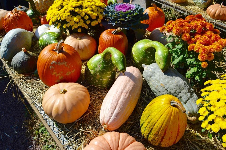 Haustür und Vorgarten prachtvoll für den Herbst dekorieren