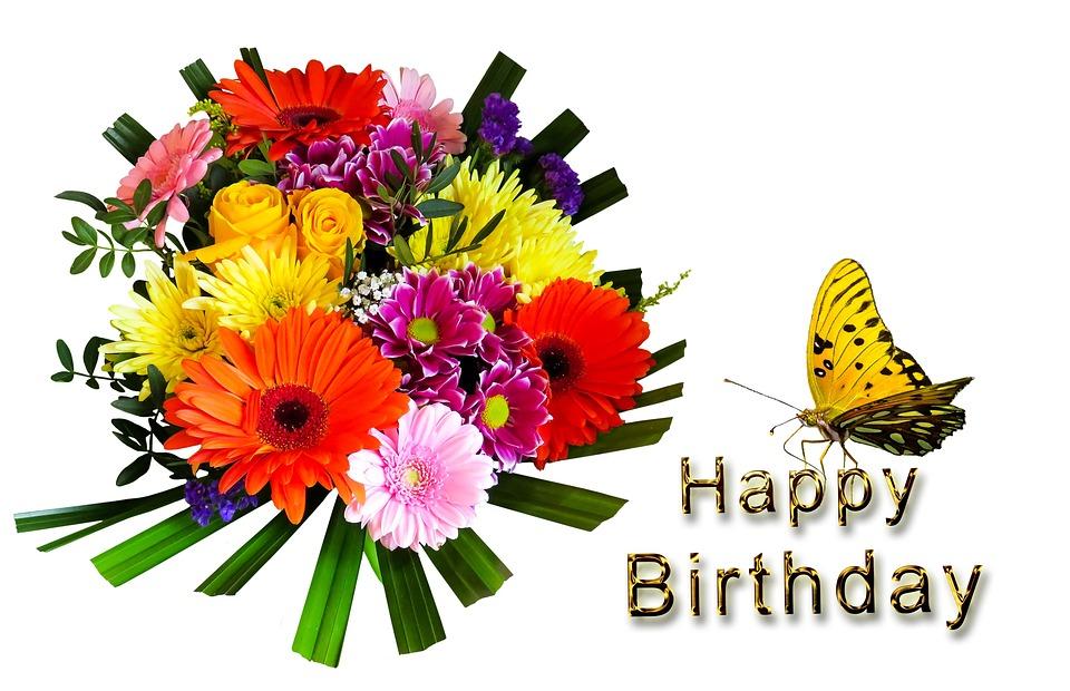 födelsedag grattis Födelsedag Grattis På Födelsedagen · Gratis foto på Pixabay födelsedag grattis
