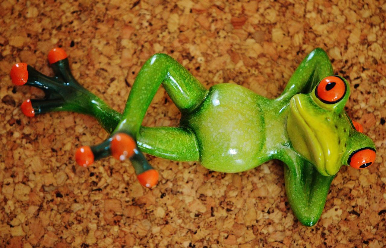 Картинка с лягушкой смешная, картинку аватарку женщине