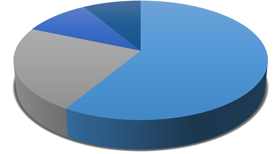 Medical Chart Holders: Free illustration: Pie Chart Diagram Data Chart - Free Image on ,Chart