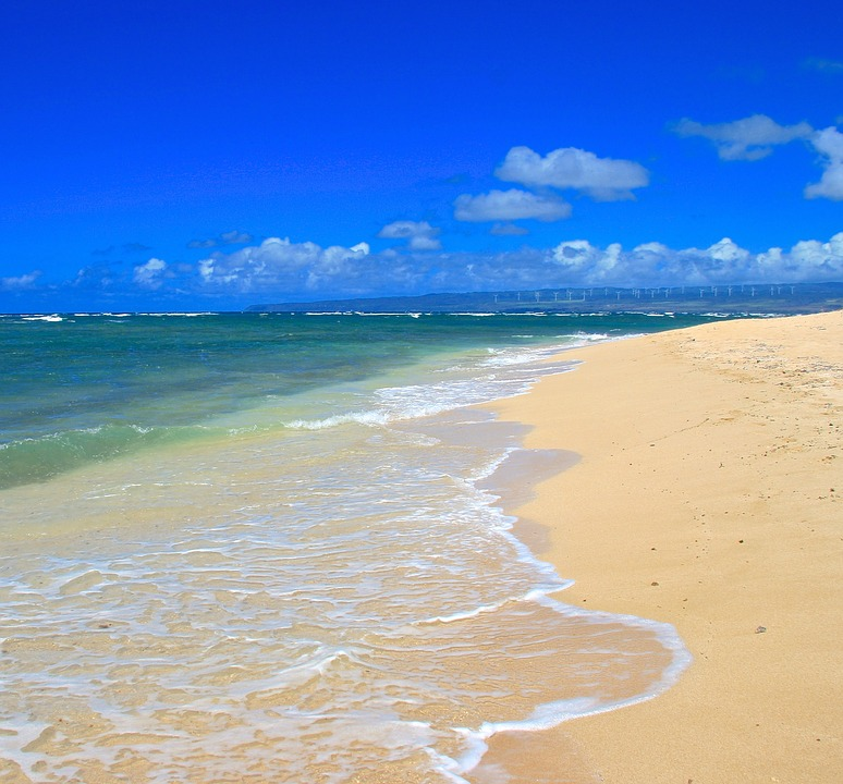 Tropical Beach And Peaceful Ocean: Free Photo: Beach, Paradise, Tropical, Ocean