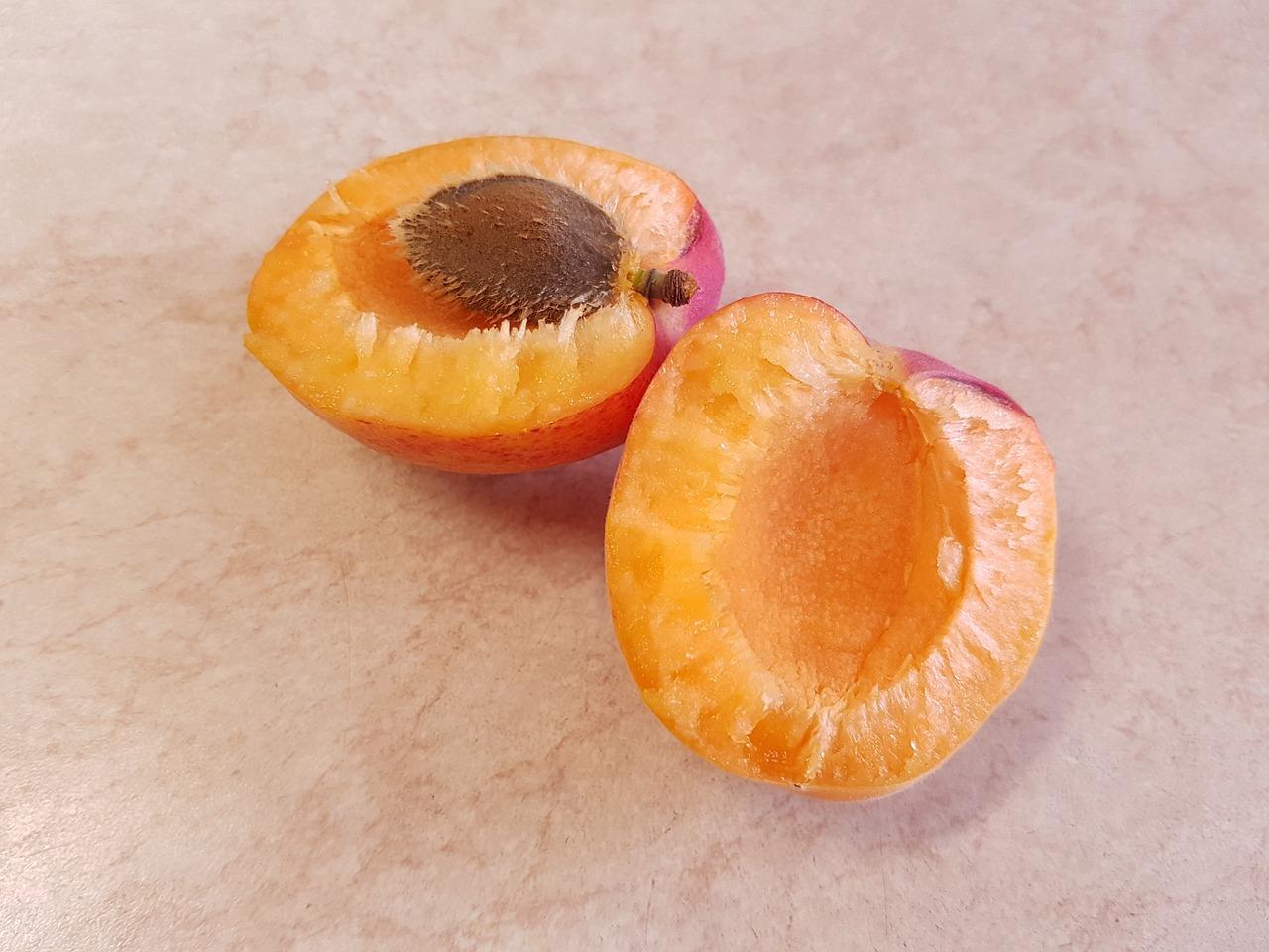 стрижка картинки абрикос и апельсина интересное выражение пришло