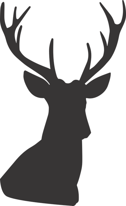 deer silhouette  u00b7 free vector graphic on pixabay Deer Head Buck Silhouette Buck Deer Clip Art