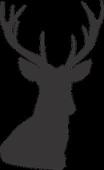 Deer, Deer Silhouette, Silhouette