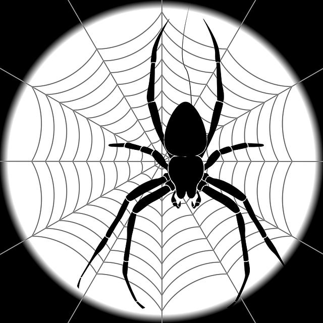 считают, что картинки пауков на паутине нарисовать этом