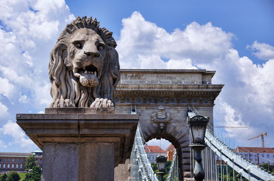 Chain Bridge, Bridge, Lion, Budapest, Sightseeing