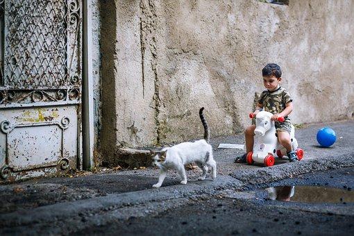 Humanities, Kitty, Play, Child, Street